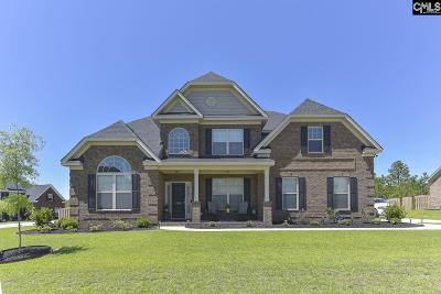 Lexington County Single Family Home For Sale: 1141 Long Ridge Way