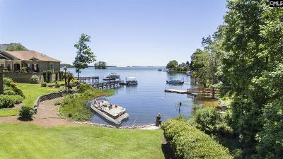 Lexington County Single Family Home For Sale: 120 Pointe Overlook