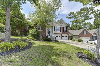 Irmo Single Family Home For Sale: 216 Kings Creek