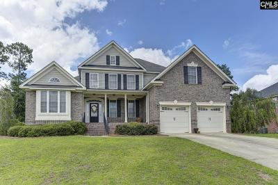 Cayce, S. Congaree, Springdale, West Columbia Single Family Home For Sale: 220 Lake Frances
