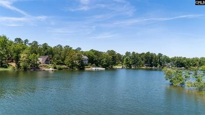 Lexington County Single Family Home For Sale: 229 Palm Lake Dr.