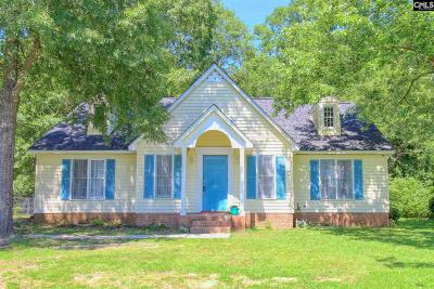 Irmo Single Family Home For Sale: 82 Old Well