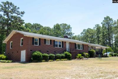 Lexington County Single Family Home For Sale: 2861 Fish Hatchery