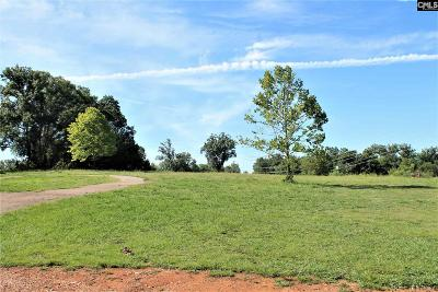 Irmo Residential Lots & Land For Sale: 11355 Broad River
