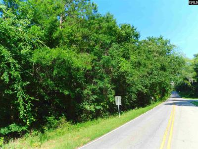 Residential Lots & Land For Sale: Old Chapin