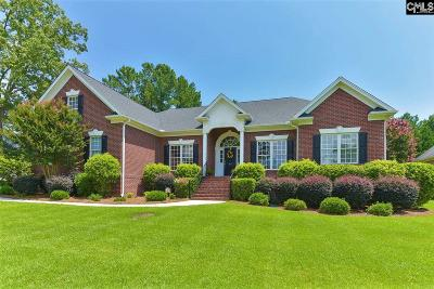 Lake Murray Single Family Home For Sale: 817 Island Point