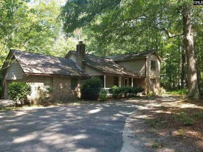Lexington County Single Family Home For Sale: 132 Devin