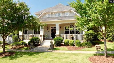 Chapin, Gilbert, Irmo, Lexington, West Columbia Single Family Home For Sale: 237 River Club