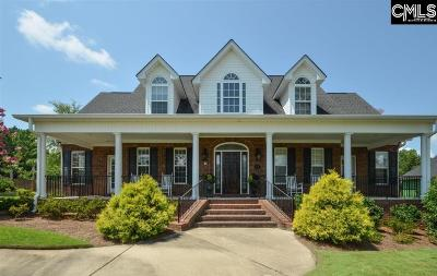 Chapin, Gilbert, Irmo, Lexington, West Columbia Single Family Home For Sale: 24 Clay