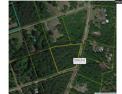 Lexington County, Richland County Residential Lots & Land For Sale: 137 Fawn