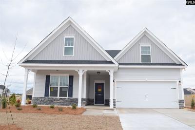 Lexington Single Family Home For Sale: 810 Spring Cress