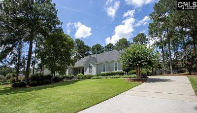 West Columbia Single Family Home For Sale: 253 Winchester