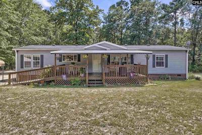 Lexington Single Family Home For Sale: 312 Macedon