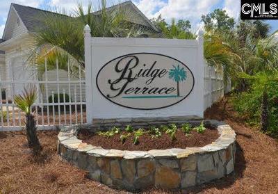 Lexington Single Family Home For Sale: 208 Ridge Terrace