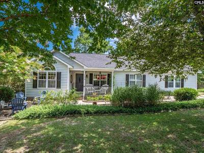 Lexington Single Family Home For Sale: 133 Maguire