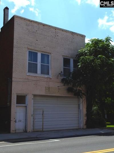 Commercial For Sale: 131 N Main