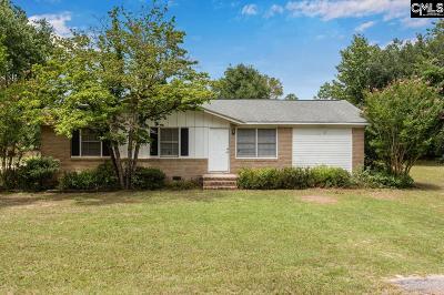 Lexington County, Richland County Single Family Home For Sale: 1125 Saint Matthews