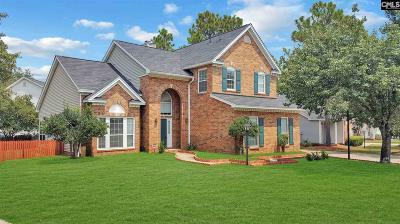 Lexington County, Richland County Single Family Home For Sale: 420 Ridge Trail