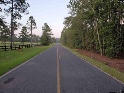 Batesburg, Leesville Farm For Sale: 473 Boyd Miller