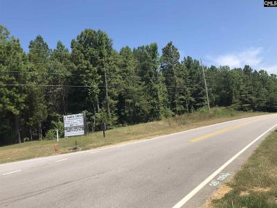 Irmo Residential Lots & Land For Sale: 1810 Shady Grove Road