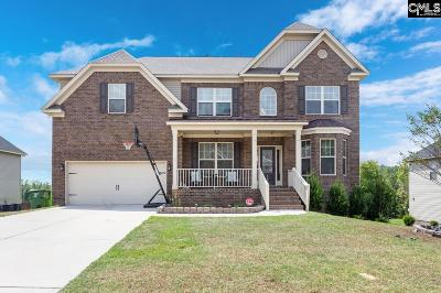 Blythewood Single Family Home For Sale: 533 Winding Brook