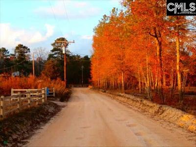 Lexington County Residential Lots & Land For Sale: 651 Bridgewater