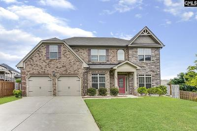 Single Family Home For Sale: 309 Meadow Overlook