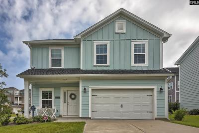 Lexington Single Family Home For Sale: 507 Pinnacle