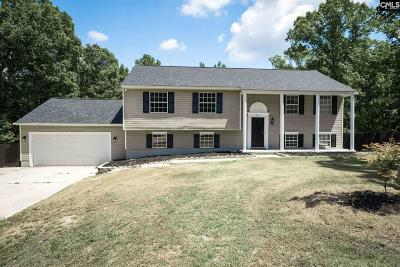 Irmo Single Family Home For Sale: 125 Winesett