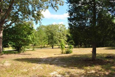 Richland County Residential Lots & Land For Sale: 225 Grimes