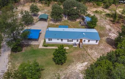 Pelion SC Single Family Home For Sale: $139,900