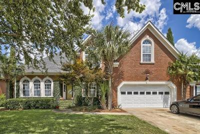 Lexington County Single Family Home For Sale: 161 Royal Lythan