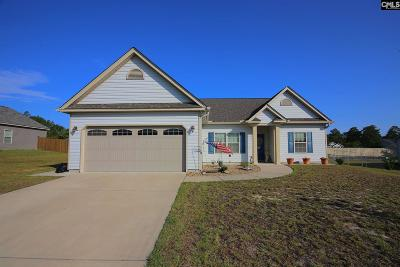 Single Family Home For Sale: 257 Sandy Valley