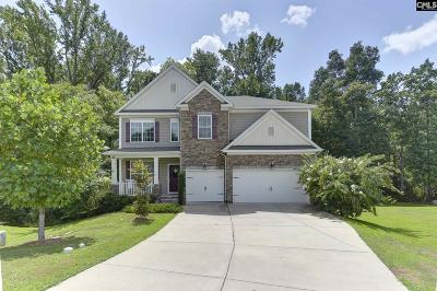 Lexington County, Richland County Single Family Home For Sale: 652 Hamlin