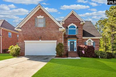 Chapin Single Family Home For Sale: 237 Hilton Village Drive
