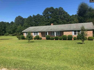 Newberry Single Family Home For Sale: 390 Rice