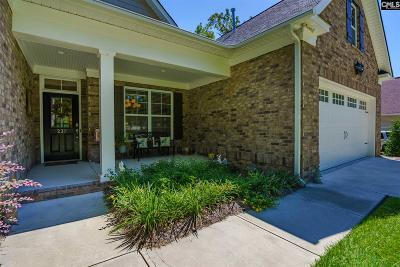 Single Family Home For Sale: 237 Vista Springs