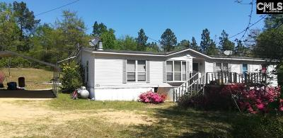 Single Family Home For Sale: 225 Pough