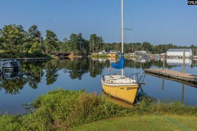 Lexington County Single Family Home For Sale: 163 Marina Cove