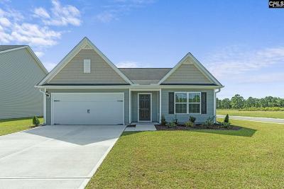 Gilbert Single Family Home For Sale: 1214 Balloon Vine