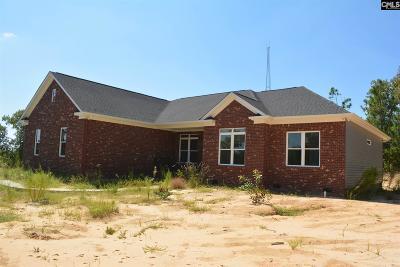 Single Family Home For Sale: 1250 Pine Plain