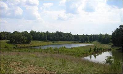 Simpsonville Residential Lots & Land For Sale: 1100 Highway 418