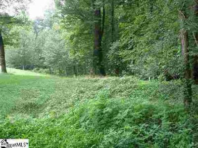 Greenville County Residential Lots & Land For Sale: 56 The Cliffs
