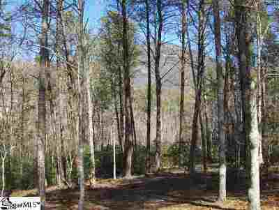 Residential Lots & Land For Sale: 205 Ridge Haven