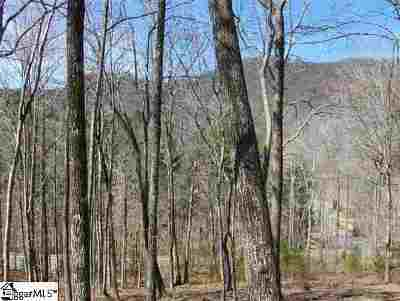 Residential Lots & Land For Sale: 2 Buck Creek