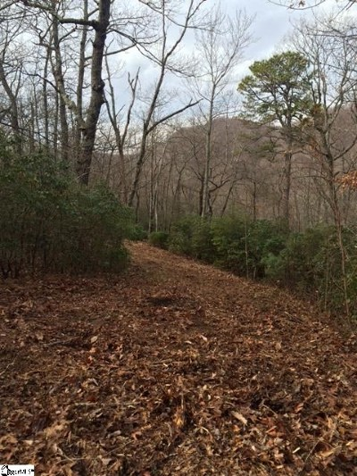 Travelers Rest Residential Lots & Land For Sale: Panther Mountain