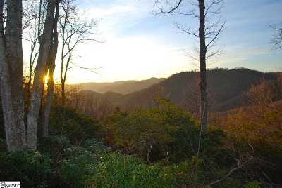Travelers Rest Residential Lots & Land For Sale: 1221 Mountain Summit