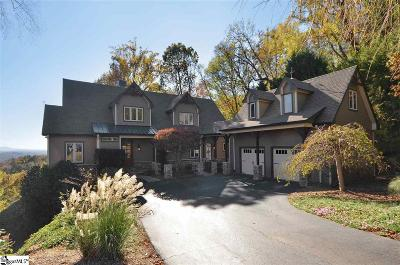 Travelers Rest Single Family Home For Sale: 615 Mountain Summit