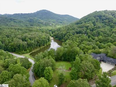 Travelers Rest Residential Lots & Land For Sale: 17 Lake Hills
