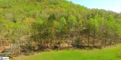 Travelers Rest Residential Lots & Land For Sale: 6 Crystal Brook